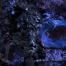 Blue Vortex in the Cave by Monica Wolfson