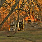 Dawsonville Georgia Barn at Dusk by Chelei
