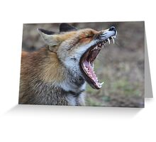 Fox - 1288 Greeting Card