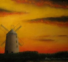 Ballycopeland Windmill,  Millisle,  Northern Ireland by Hilary Robinson