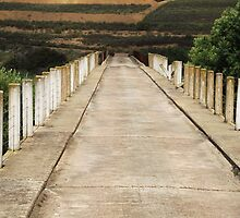 Bridge to serenity - Greyton RSA by Loockfamily