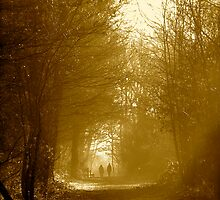 Walk in the Woods by newbeltane