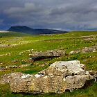 Ingleborough and Limestone. by McBay