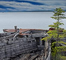 Shipwrecks at Neys Provincial Park by Randall Nyhof