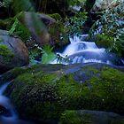Cement Creek by Daniel Berends