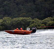 Agent Orange by seaviewplace