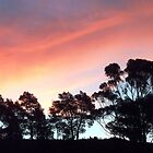 Sunset February 13, Lilydale, Tasmania by RainbowWomanTas