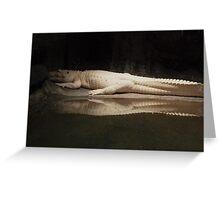 White Alligator  Greeting Card