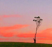 Loan Tree at Sunset by Paul Campbell  Photography