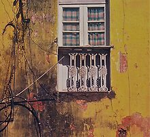 Wired window- Goa, India by mypic