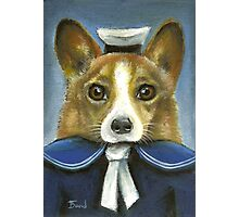 Corgi the sailor Photographic Print