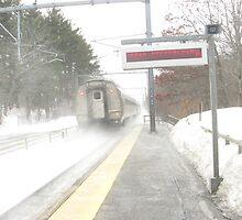 Snowy Regional by Eric Sanford