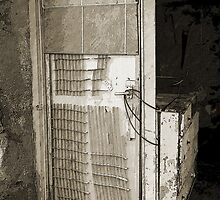 In Need of TLC! by sarnia2