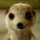 Happy Meerkat Face by Earth-Gnome