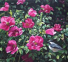 """Among The Roses--Blackcapped Chickadee"" by Frank Boudreau"