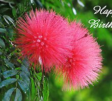 Happy Birthday greeting card (silk flower) by hummingbirds