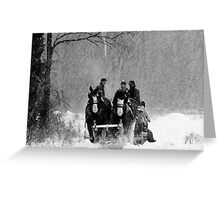 Snowfall (B&W) Greeting Card