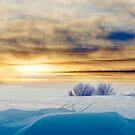 Winter skylight by natans