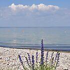 Swedish Summer by Hilda Rytteke