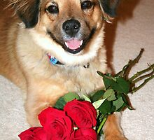 Will you be my Valentine? by Terri~Lynn Bealle