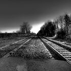Tracks to the Past  by Marcia Rubin