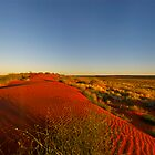 Red Dune by donnnnnny