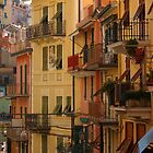 Manarola by Kent Nickell