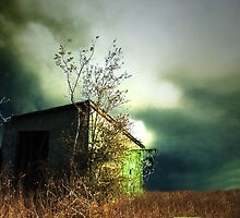 passionate abandonment by Rebecca Morrison