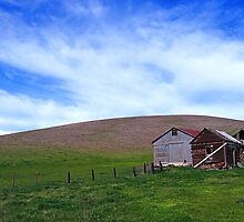 Patterson Pass Rd  •  Livermore Farm by Richard  Leon
