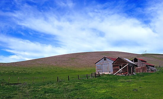 Patterson Pass Rd  •  Livermore Farm by Richard  Leon