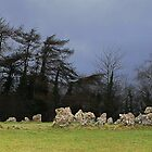 361 - Rollright Stones by jdubj