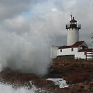 Eastern Point Light - Gloucester, Massachusetts by Steve Borichevsky