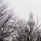 Winter Fernsehturm, Berlin by David Crausby