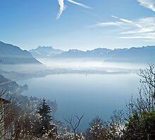 raising above the fog by Fran E.