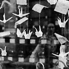 Origamis by Nayko