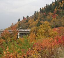 Viaduct on the Blue Ridge Parkway, Fall by hicklinbn