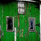 What's behind the Green Door by waxyfrog
