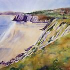 Gower View by Ruth S Harris