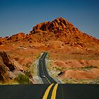 Desert Highway by Michael Palmer