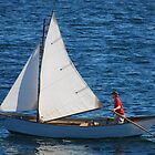 Tom's Sail Dory  by Steve Borichevsky