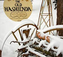 The Old Hashienda by Jeanne Sheridan