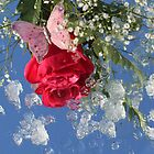 The beauty of a rose by ZeeZeeshots