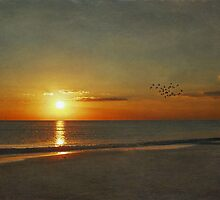 My Sun Sets to Raise Again by tori yule