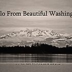 hello from beautiful washington by dedmanshootn