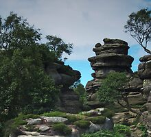 At Brimham Rocks 2 by WatscapePhoto