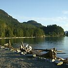 Porteau Cove, British Columbia by ampo