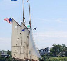Schooner Virginia in Inner Gloucester Harbor by Steve Borichevsky