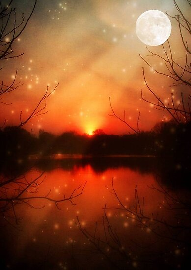 Magical Eve-McCarty Park © by Dawn M. Becker
