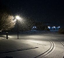 Peaceful Snowstorm-Tracks by Sean Heslin
