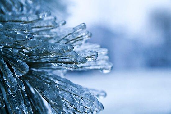 The Deep Freeze- Beautiful Destruction by SeanCH